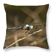 Blue Dasher 8769 Throw Pillow