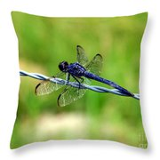 Blue Dragonfly On Barb Wire Throw Pillow