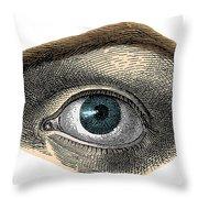 Blue Eye Throw Pillow