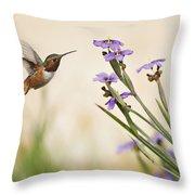Blue-eyed Grass Wildflowers And Rufous Hummingbird Throw Pillow