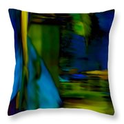 Blue Feather Reflections Throw Pillow
