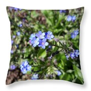 Blue Forget Me Not Throw Pillow
