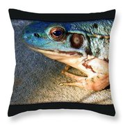 Blue Frog Throw Pillow