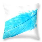 Blue Goose Throw Pillow