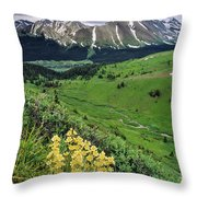 Blue Grouse Pass, Willmore Wilderness Throw Pillow