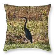 Blue Heron At Valley Forge Throw Pillow
