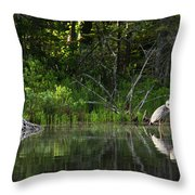 Blue Heron Long Pond Wmnf Throw Pillow