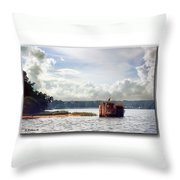 Blue Heron On The Duck Blind Throw Pillow