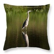 Blue Heron Reflection Throw Pillow