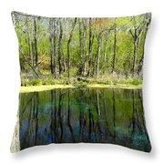 Blue Hole Springs Florida Throw Pillow