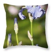Blue Iris Close Up - Dsc03741 Throw Pillow