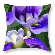 Blue Irises Throw Pillow