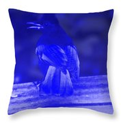 Blue Jay Has The Blues Throw Pillow