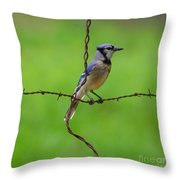 Blue Jay On Crossed Wire Throw Pillow