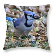 Blue Jay With A Piece Of Corn In Its Mouth Throw Pillow