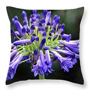 Blue Lily Of The Nile Throw Pillow