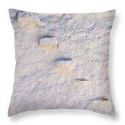 Blue Line Throw Pillow