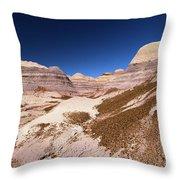 Blue Mesa Landscape Throw Pillow