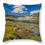 Blue Mesa Reservoir - V Throw Pillow