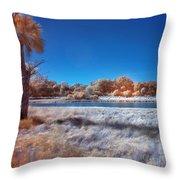 Blue Pond Throw Pillow