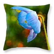 Blue Poppy Dreams Throw Pillow