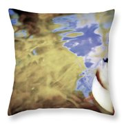 Blue Reflections Throw Pillow