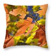 Blue Ridge Autumn Leaves 1.0 Throw Pillow