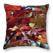 Blue Ridge Autumn Leaves 1.1 Throw Pillow