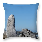 Blue Sky Coastal Landscape Driftwood Rock Pier Throw Pillow