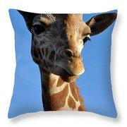 Blue Sky Giraffe Throw Pillow