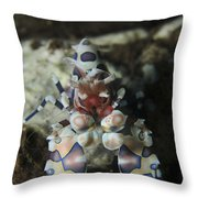 Blue Spotted Harlequin Shrimp, Bali Throw Pillow