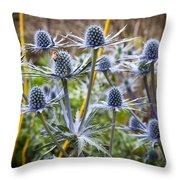 Blue Stem Sea Holly Throw Pillow