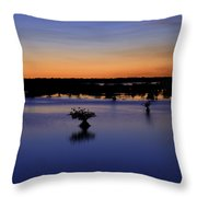 Blue Sunset Mangroves Throw Pillow
