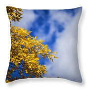 Blue White And Gold Throw Pillow