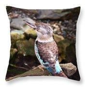 Blue-winged Kookaburra 2 Throw Pillow