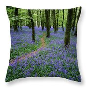 Bluebell Wood, Near Boyle, Co Throw Pillow