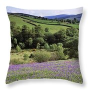 Bluebells In A Field, Sally Gap, County Throw Pillow