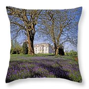 Bluebells In The Pleasure Grounds, Emo Throw Pillow