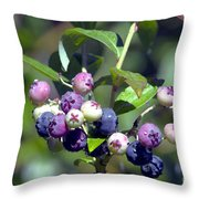 Blueberry Bunch With Raindrops Throw Pillow