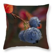 Blueberry Dewdrops Throw Pillow