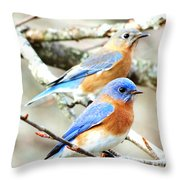 Bluebird Couple Throw Pillow
