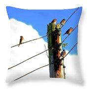 Bluebird Gathering Throw Pillow