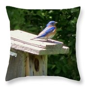 Bluebirds Make Me Happy Throw Pillow