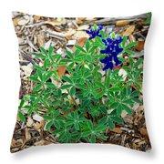 Bluebonnet II Throw Pillow