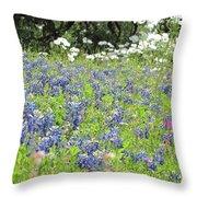 Bluebonnets Throw Pillow