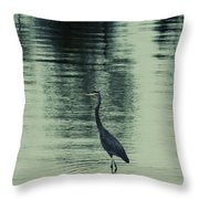 Bluegreen Lake Throw Pillow