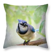 Bluejay In A Tree Throw Pillow