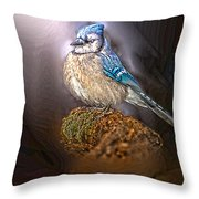 Bluejay In Spotlight Throw Pillow