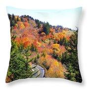 Blueridge Parkway View Near Hwy 215 Throw Pillow
