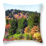 Blueridge Parkway View Near Mm 423 Throw Pillow